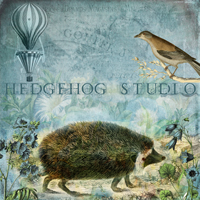 Hedgehog Studio